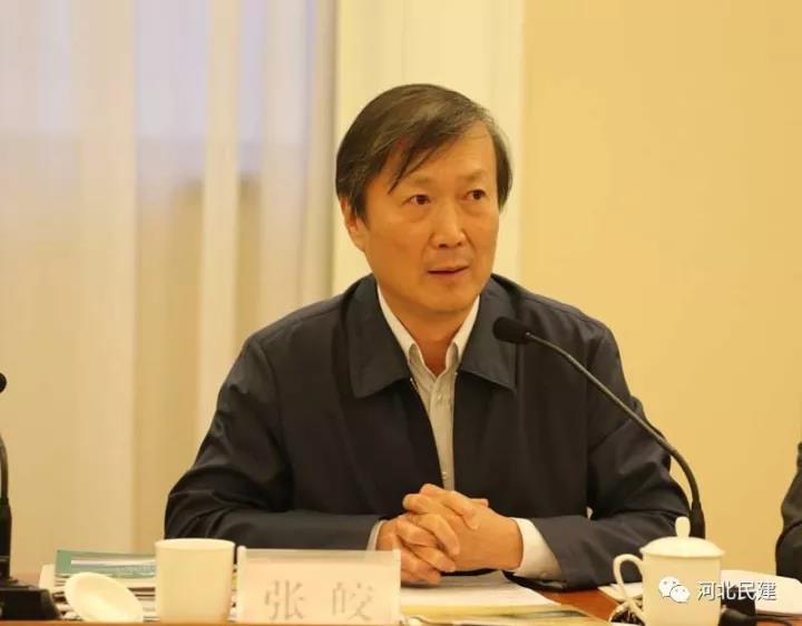 民建中央宣传部长张皎应邀到会并作讲话.jpg