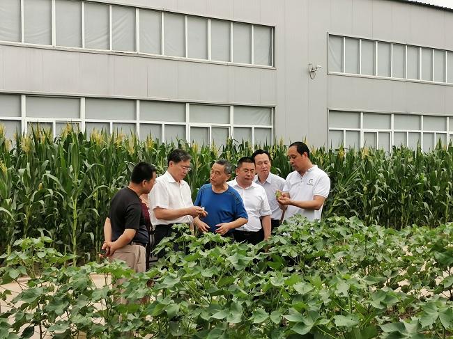 沧州河间调研3 (9)-1.jpg